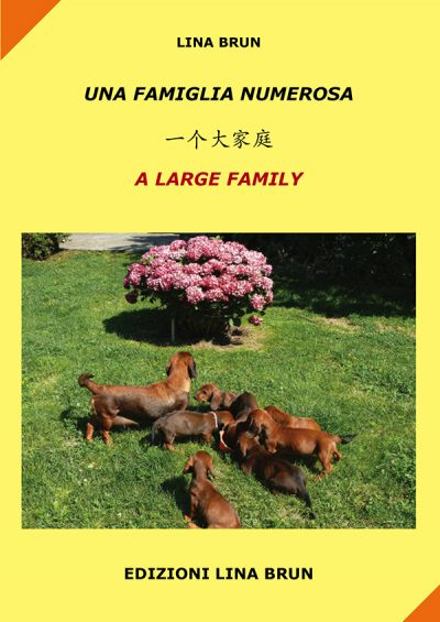 famiglia-numerosa-cinese