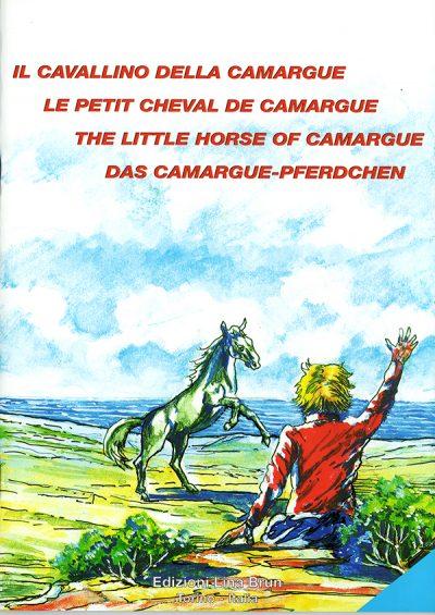 il-cavallino-della-camargue