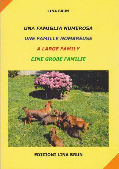 una-famiglia-numerosa